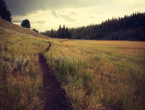 droga szlak trasa
